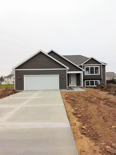 Plainwell Single Family Home For Sale: 503 Foxmoor Drive