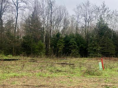 Grand Haven, Spring Lake, Ferrysburg Residential Lots & Land For Sale: Lot 18 Fellsway Run