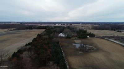 Isabella County Residential Lots & Land For Sale: Parcel B Crawford Road