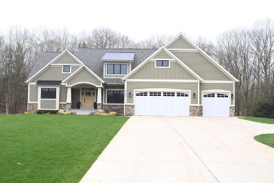 Allegan County Single Family Home For Sale: 3494 Palmer Drive