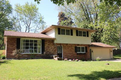Holland, West Olive Single Family Home For Sale: 38 W 39th Street