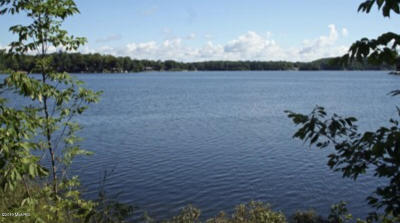 Newaygo Residential Lots & Land For Sale: S River Dr Lots 38 & 39