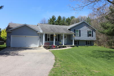 Allegan Single Family Home For Sale: 1918 43rd Street