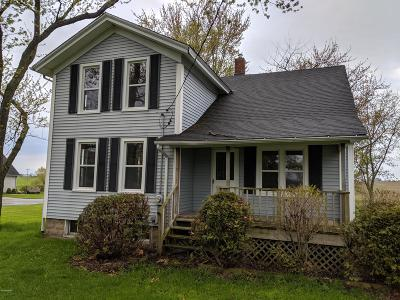Allegan County Single Family Home For Sale: 3820 56th Street