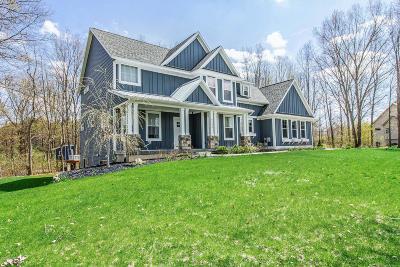 Kalamazoo Single Family Home For Sale: 6795 Terrier Trail Trail