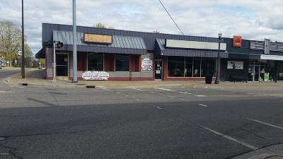 Scottville Commercial For Sale: 101 S Main Street