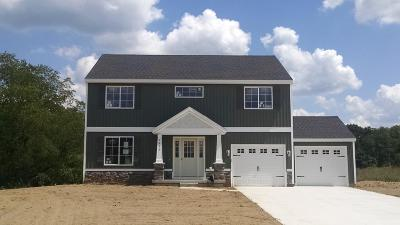 Newaygo Single Family Home For Sale: Lot 4 N River Hills Drive