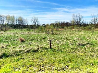 Harbert Residential Lots & Land For Sale: 10 Jane Way