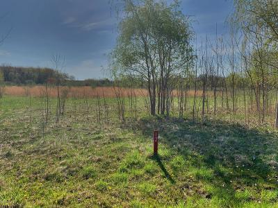 Harbert Residential Lots & Land For Sale: 12 Jane Way