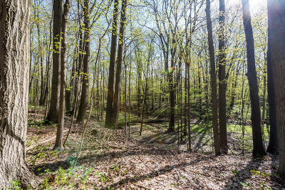 Berrien County Residential Lots & Land For Sale: 5004 Hanover Road
