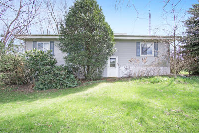 Whitehall, Montague Single Family Home For Sale: 6777 W Roosevelt Road