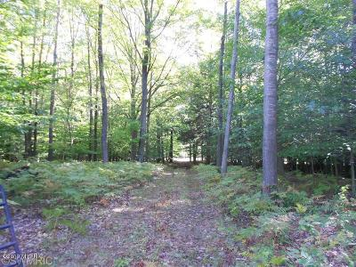 Ludington Residential Lots & Land For Sale: N Jebavy Drive