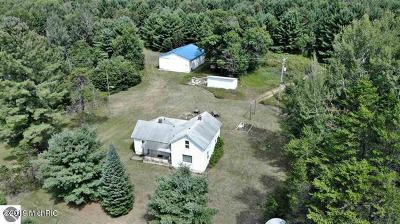 Benzie County, Charlevoix County, Clare County, Emmet County, Grand Traverse County, Kalkaska County, Lake County, Leelanau County, Manistee County, Mason County, Missaukee County, Osceola County, Roscommon County, Wexford County Single Family Home For Sale: 7454 W Temple Drive