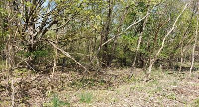 Paw Paw Residential Lots & Land For Sale: 301 Harris Street