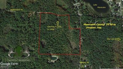 Montcalm County Residential Lots & Land For Sale: 0 Vl Hillman Rd