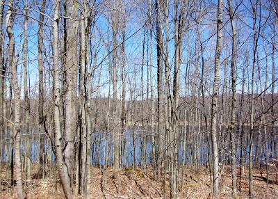 Reed City Residential Lots & Land For Sale: 10281 Bern Drive