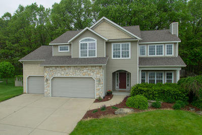 Kalamazoo Single Family Home For Sale: 7560 Texas Heights Avenue