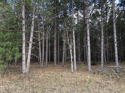 Manistee County Residential Lots & Land For Sale: C Airport Road
