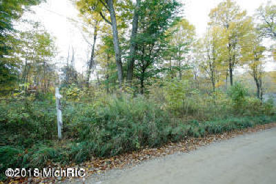 Plainwell Residential Lots & Land For Sale: 1194 108th Avenue