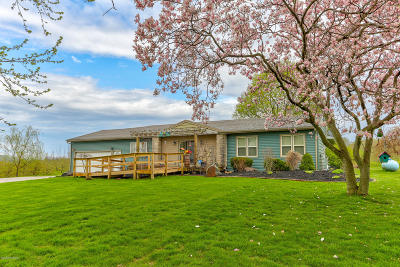 South Haven Single Family Home For Sale: 813 64th Street