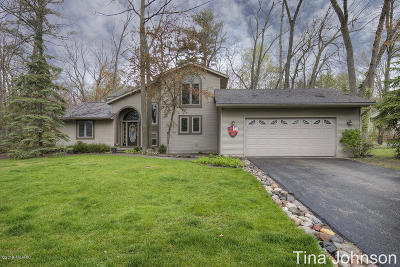 Rockford Single Family Home For Sale: 3373 Riverwoods Drive NE