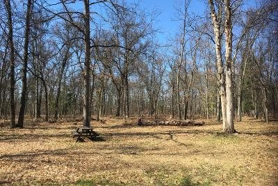 Manistee County Residential Lots & Land For Sale: 22254 Oak Drive