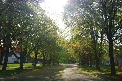 East Grand Rapids Residential Lots & Land For Sale: 2142 Englewood Drive SE