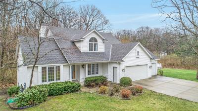 Holland, West Olive Single Family Home Active Contingent: 16639 Rolling Oaks Lane