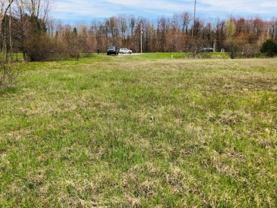 Ludington Commercial For Sale: 2469 W Us 10 Highway