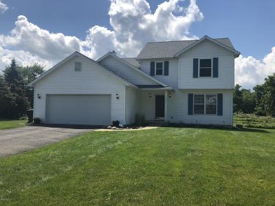 Battle Creek Single Family Home For Sale: 125 Kings Court