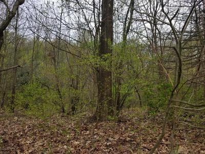 Kalamazoo Residential Lots & Land For Sale: 505 N 4th Street