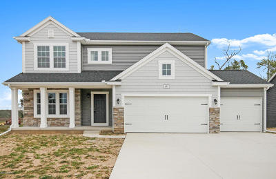 Byron Center Single Family Home For Sale: 687 Painted Rock Drive