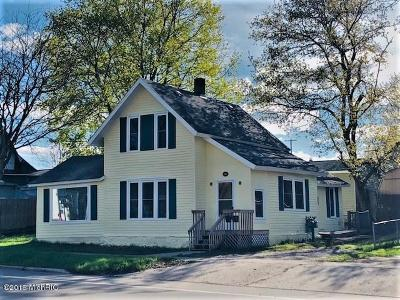 Reed City Single Family Home For Sale: 617 S Chestnut Street