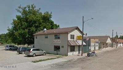 Barryton Commercial For Sale: 59 Northern Avenue