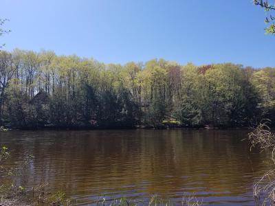 Mecosta County Residential Lots & Land For Sale: 18891 Stonehouse Rd