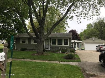 Watervliet Single Family Home For Sale: 524 W Parsons Avenue
