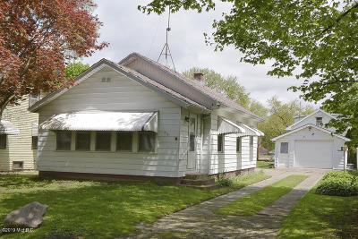 Kalamazoo Single Family Home For Sale: 615 Alger Street