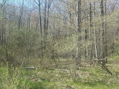 Residential Lots & Land For Sale: Water Tower Lane