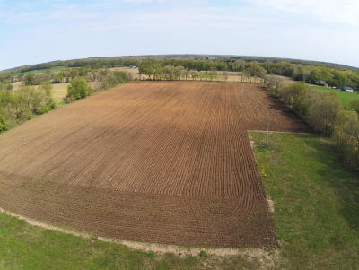 Berrien County, Branch County, Cass County, Calhoun County, Hillsdale County, Jackson County, Kalamazoo County, Van Buren County, St. Joseph County Residential Lots & Land For Sale: 12750 Hutchins Road