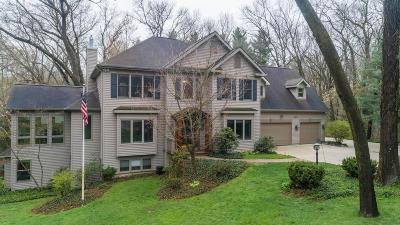 Kalamazoo Single Family Home For Sale: 7714 Farmington Avenue