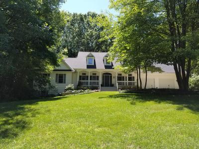 Kalamazoo Single Family Home For Sale: 6847 Northstar Avenue