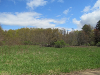 Residential Lots & Land For Sale: Lakeshore Dr. Drive