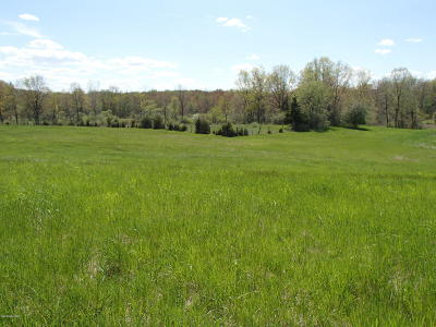 Residential Lots & Land For Sale: N Q Drive