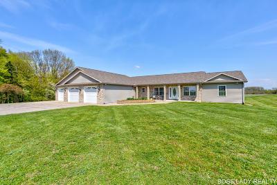 Kent City Single Family Home For Sale: 16988 Kenowa Avenue