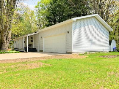 Mecosta County Single Family Home For Sale: 20175 Lincoln Road