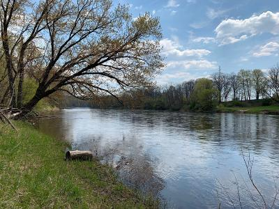 Clinton County, Gratiot County, Isabella County, Kent County, Mecosta County, Montcalm County, Muskegon County, Newaygo County, Oceana County, Ottawa County, Ionia County, Ingham County, Eaton County, Barry County, Allegan County Residential Lots & Land For Sale: V/L 195th Avenue