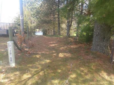 Leroy Residential Lots & Land For Sale: 170th Avenue