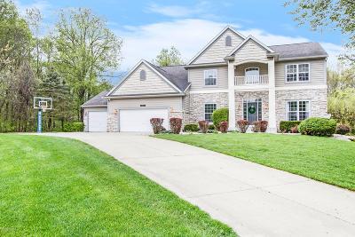 Kalamazoo Single Family Home For Sale: 8532 Mystic Trail
