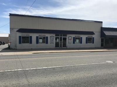 Scottville Commercial For Sale: 104 E State Street