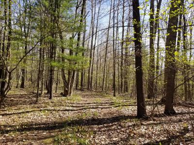 Evart Residential Lots & Land For Sale: Hardwood Trail